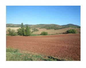 red spanish soil