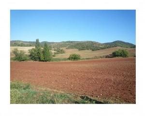 red spanish soil